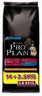 Purina Pro Plan Dog Adult Large Robust 14kg + 2,5kg
