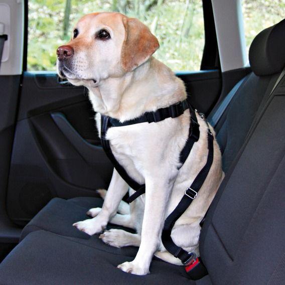 Trixie Bezpečnostní postroj do auta pes
