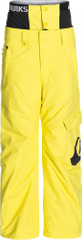 Quiksilver Planner Youth Pant