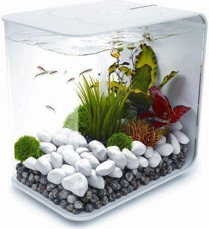 Biorb Flow akvárium bílé 15l