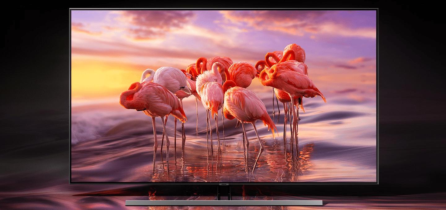 samsung tv telewizor qled 2019 quantum dot 100% objętość barw q60r fantastyczny kolor doskonałość obrazu