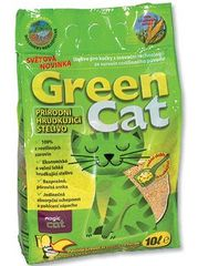 Magic Cat Green Cat
