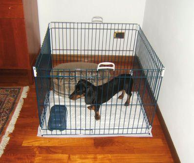 Ferplast kavez za pse Dog Training