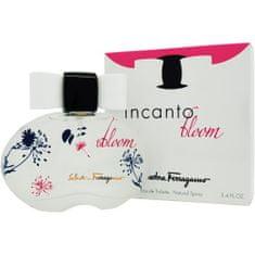 Salvatore Ferragamo Incanto Bloom EDT - 100 ml