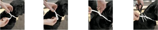 Scalibor antiparazitní obojek