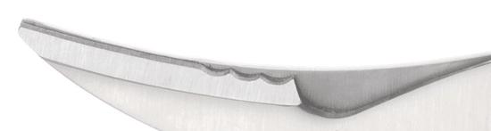 Tescoma Tescoma Nůžky na drůbež AZZA (884560)