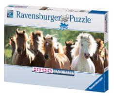 Ravensburger Wild Horse Panoráma Puzzle, 1000 darabos