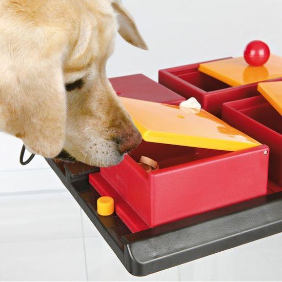 Trixie pasja igrača Activity Poker Box
