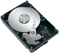 Seagate Barracuda 7200.14 500 GB, ST500DM002