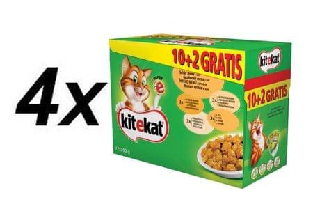 Kitekat sucha karma dla kota Wiejskie menu 4 x (12 x 100g)