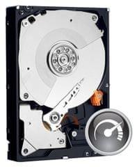 WD tvrdi disk Caviar Black 1TB (WD1003FZEX)