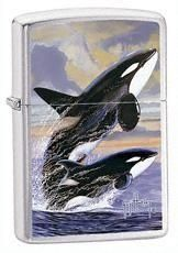 Zippo Vžigalnik Classic Guy Harvey Killer Whales Brushed Chrome
