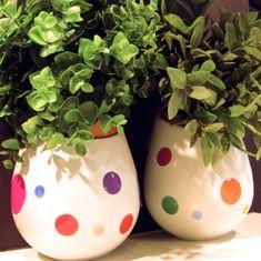 Crearreda dekorativna nalepka, barvni krogi (31405)