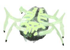 Hexbug Scarabeus ZOMBIE