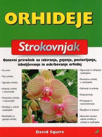 David Squire: Orhideje