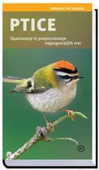 Ptice, Angelika Lang (2013 (1. ponatis))