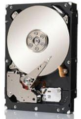 Seagate Tvrdi disk Constellation 2 TB, 7200 rpm, 128 MB, SAS (ST2000NM0023)