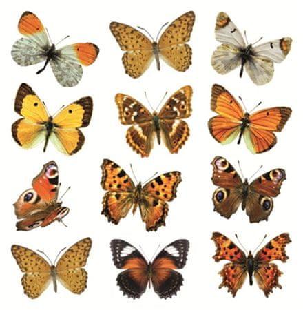 Crearreda stenska dekorativna nalepka, barviti metulji (54453)