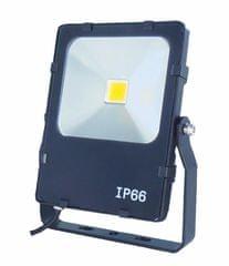 Dencop Lighting LED reflektor, 48 W, 6000 K, Fekete