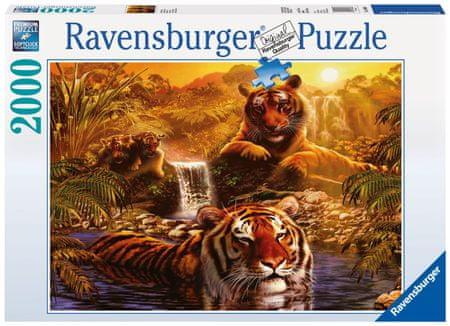 Ravensburger sestavljanka risani tigri