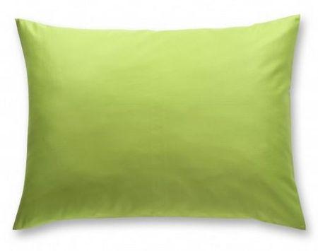 Odeja prevleka za vzglavnik Pan, 40 x 40 cm zelena