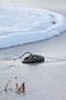 4 - Pontec odmrażacz IceFree Thermo 200