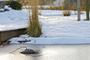 6 - Pontec odmrażacz IceFree Thermo 200