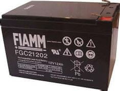 Fiamm akumulator FGC21202