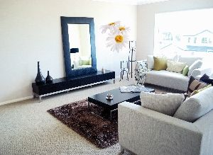 Crearreda stenska dekorativna nalepka, flat velike marjetice XL