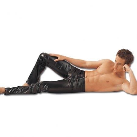Pánské kalhoty (L)