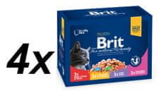 Brit Premium Cat Pouches Family Plate 4x( 12x100g)