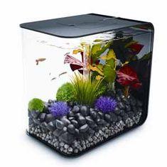 Biorb Flow akvárium čierne 30l