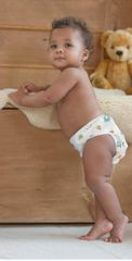 Bambinomio Plenkový testovací balíček NEW potisk, vel. 2 (od 9 kg)