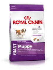 Royal Canin Giant Puppy hrana za štence, 15 kg