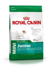 Royal Canin Mini Junior Kutyaeledel, 8 kg