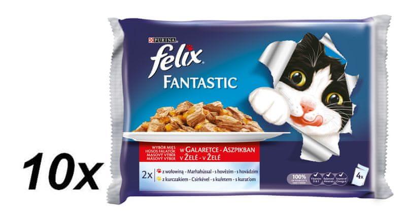 Felix Fantastic masový výběr s hovězím a kuřetem v želé 10 x ( 4 x 100g)