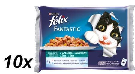 Felix mokra hrana za mačke Multipack, losos in trska v želeju, 10x (4x100g)