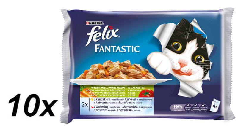 Felix Fantastic masový výběr se zeleninou s kuřetem a rajčaty a hovězím s mrkví 10 x ( 4 x 100 g)