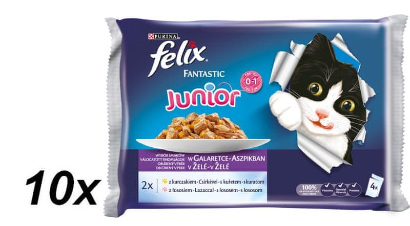 Felix Fantastic Junior s kuřetem a lososem v želé 10 x ( 4 x 100 g)