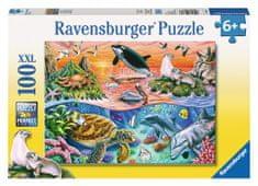 Ravensburger Pestrý oceán 100d