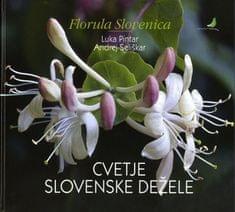 Andrej Seliškar, Luka Pintar: Cvetje slovenske dežele
