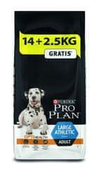 Purina Pro Plan Adult large athletic, 14 + 2,5 kg ajándék