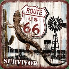 Postershop Sada 5ks plechových tácků Route 66 (Survivor)