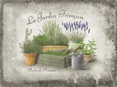 Postershop Plechová tabuľa 30x40 cm Le Jardin Francais