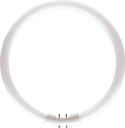 Philips Master TL-5 C 22W/830 kruhová zářivka