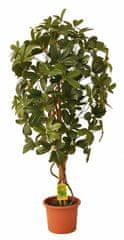 EverGreen Sztuczna szeflera o wysokości 110 cm, w doniczce, zielona