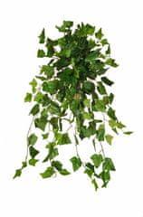 EverGreen Břečťan délka 100 cm