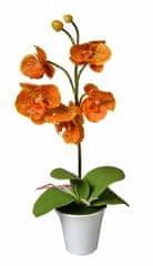 EverGreen Sztuczny storczyk w doniczce o wysokości 35 cm, pomarańczowy