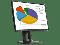 HP IPS monitor Z24n