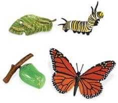 Safari Ltd. Životný cyklus - Motýľ